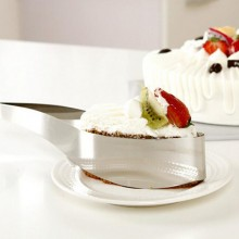 As seen on TV Stainless steel cake server / slicer / cutter